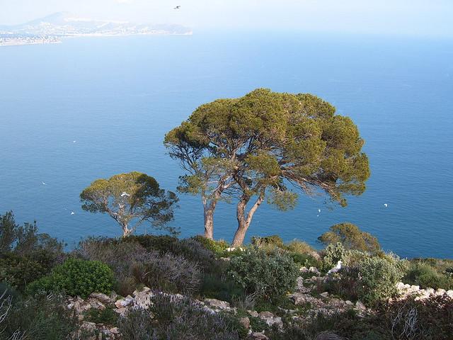 costa-blanca-hiszpania