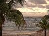plaza palmy jamajka
