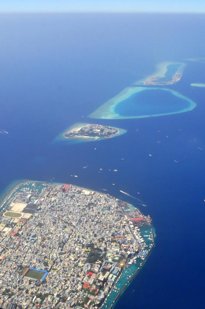 Male malediwy
