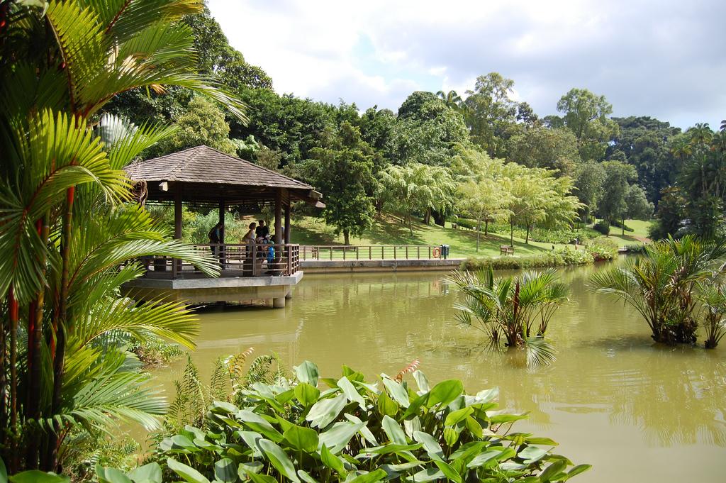 Singapore Botanic Garden singapur