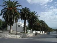 kartagina-tunezja