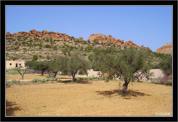 nabeul-tunezja